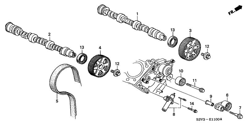 timing belt or timing chain in 07 ex 4wd